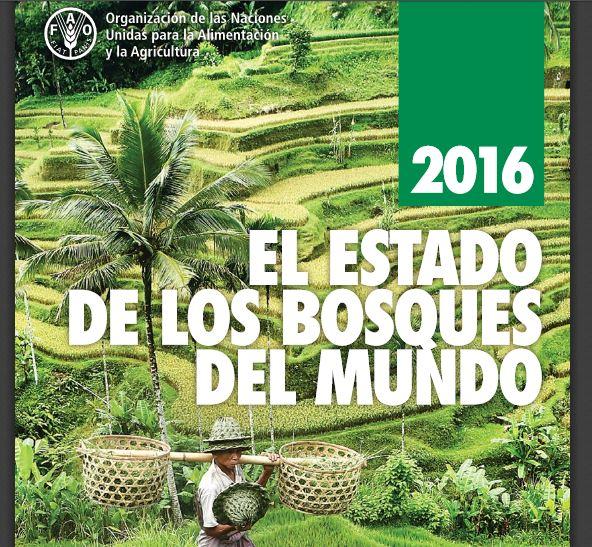 Bosques del mundo 2016