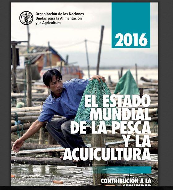 Estado mundial de la pesca