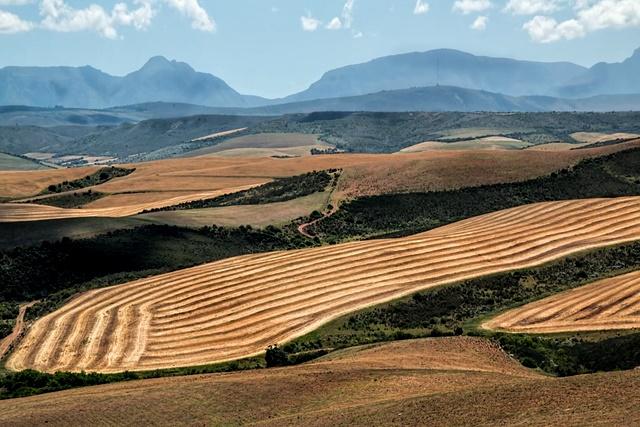 agricultura y cambio climático