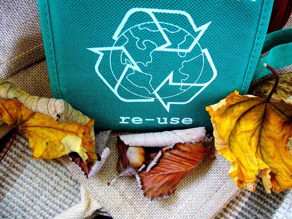 sabes reciclar